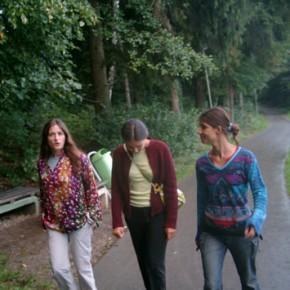 Velenje: camminata nei boschi