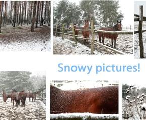 E un po' di neve d'inverno...