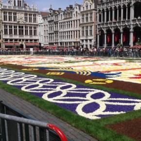 Tappeto di fiori in Piazza