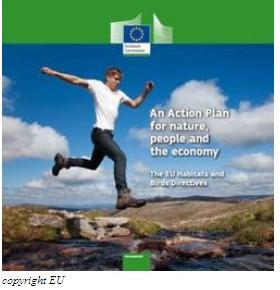 Piano d'azione dell'UE per la natura: pubblicati orientamenti per i progetti relativi alle energie rinnovabili