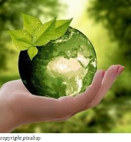 Premio europeo per la sostenibilità: invito a presentare proposte